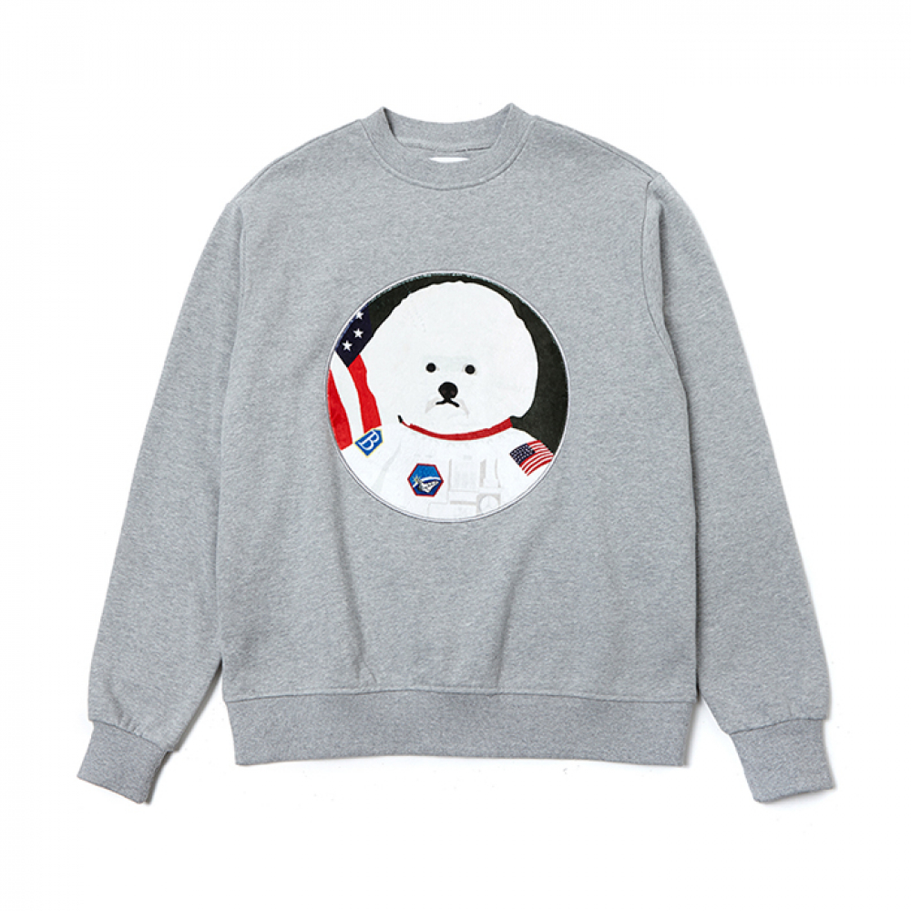 [2/28출고] APOLLO DOG PATCH S-S 2019VER GRAY